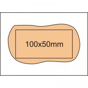 vehicle base 10x5-800x800
